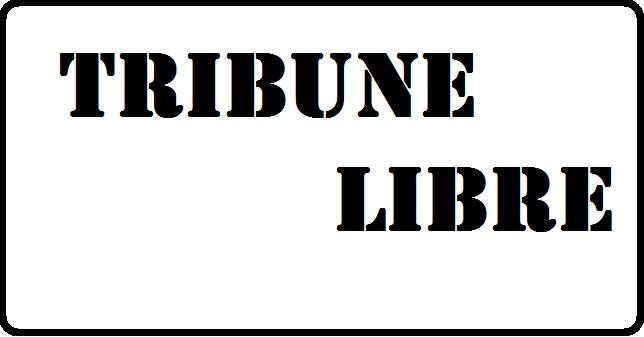 Crise sécuritaire dans la province du Gourma: le MBDHP tire la sonnette d'alarme
